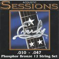 Acoustic Sessions strings (12)