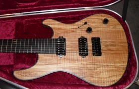 Regius 7 custom for Alexandria