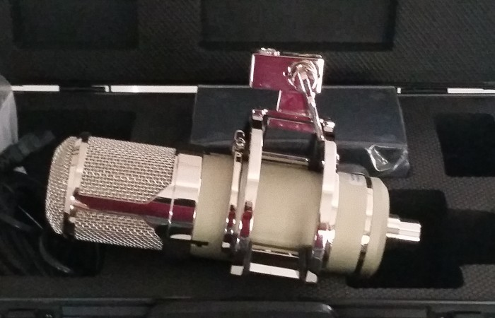 LT386 Eden studio mic