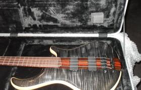 Custom Patriot 4 bass for Segression bassist Chris Rand