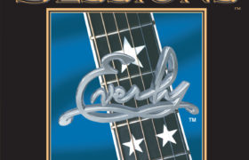 Acoustic Sessions strings (6) 12-53 gauge
